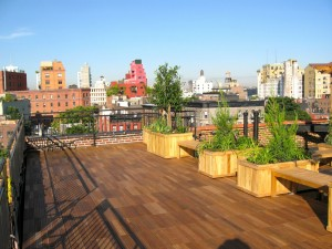 Rooftop deck with planters in midtown Manhattan