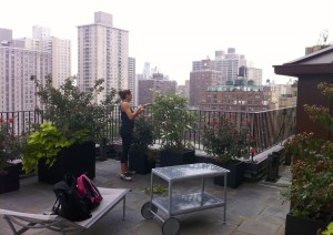 trimming and watering plants on a terrace in NYC