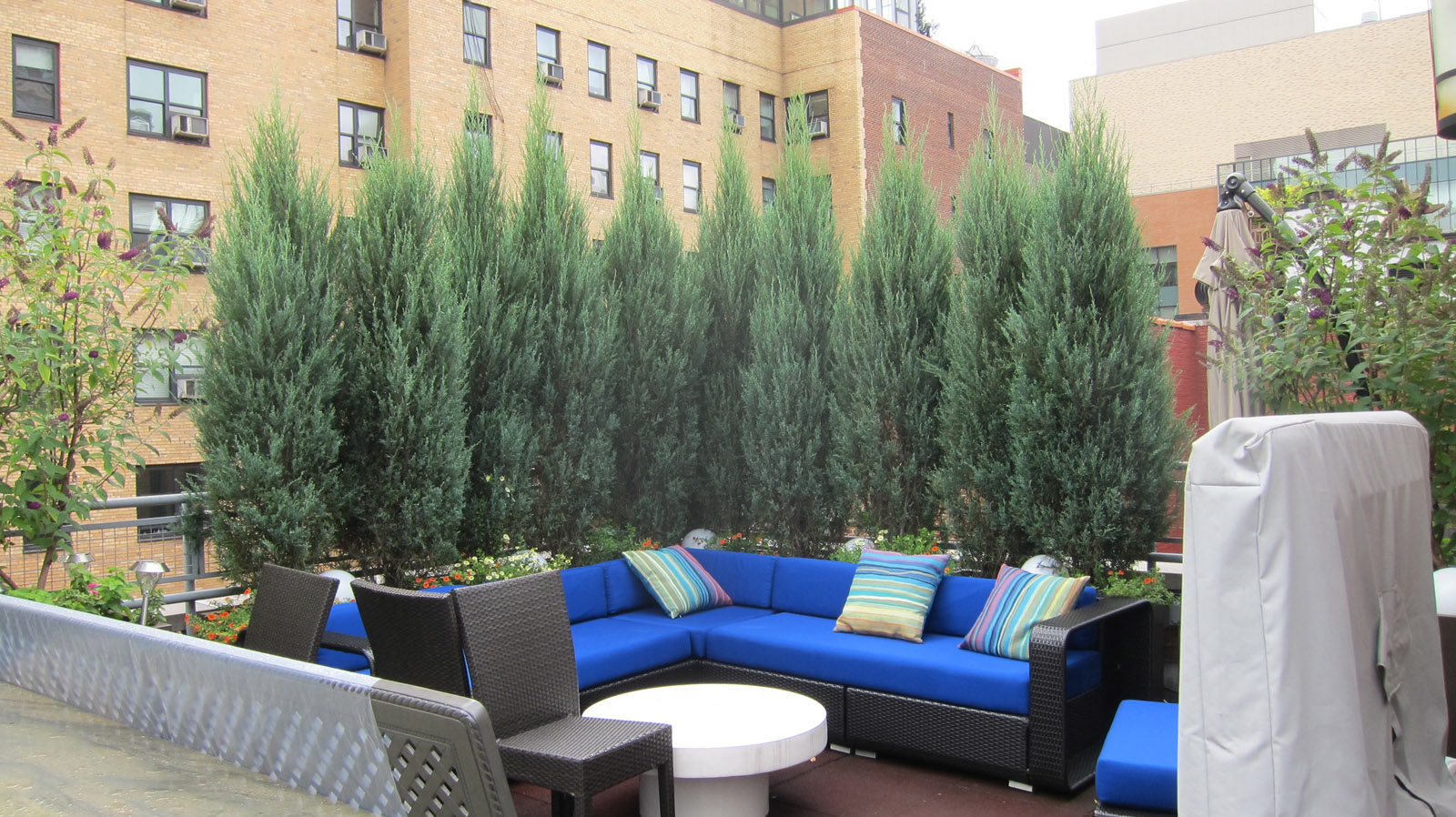 rooftop furniture. outdoor furniture sectional couch sofa and loveseat for gardens rooftop