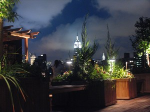 Rooftop garden in Manhattan at night. Lighting designed for this outdoor deck with the Empire State Building in the background.
