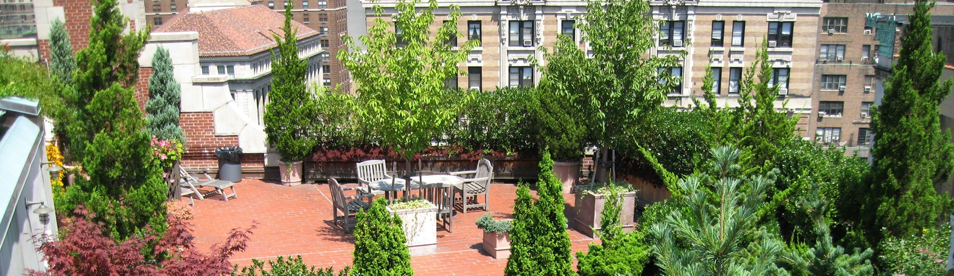 Common space garden on a rooftop in Manhattan