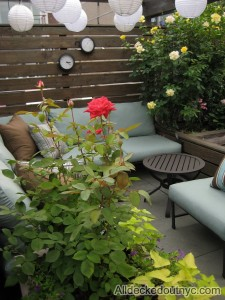 outdoor-garden-decor-7