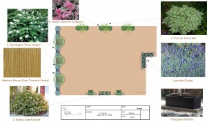 garden-layout-back-3