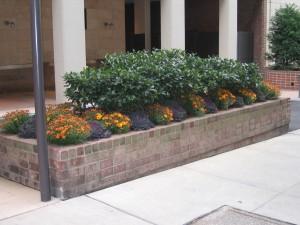 brink-planter-fall-sm