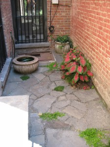 irregular-bluestone-patio