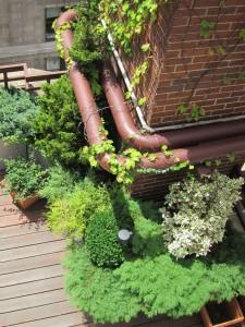 private garden 20