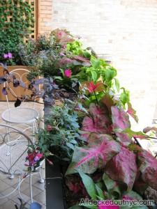 private garden 26