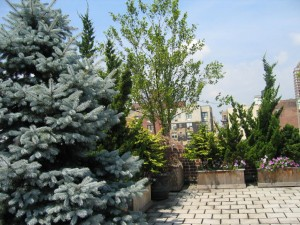 private garden 21