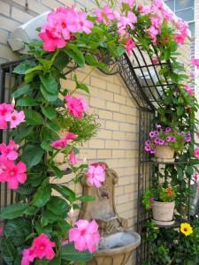 private garden 14