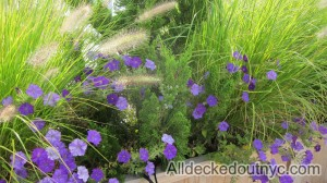 seasonal planting 2