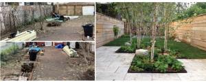 backyard-brooklyn-before-after