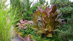 common-space-garden-1