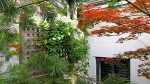common-space-garden-2