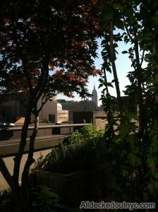 nyc-urbanscape-garden-134