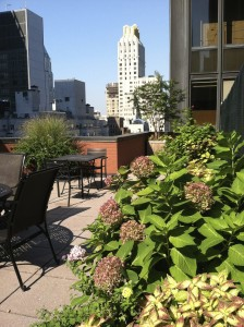 nyc-urbanscape-garden-133