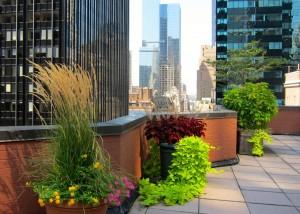 nyc-urbanscape-garden-128