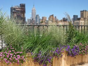nyc-urbanscape-garden-124