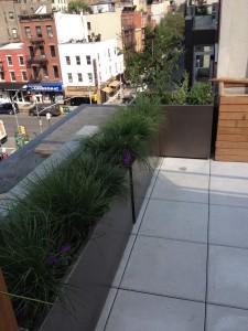 nyc-urbanscape-garden-19