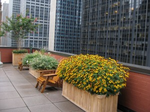 nyc-urbanscape-garden-17