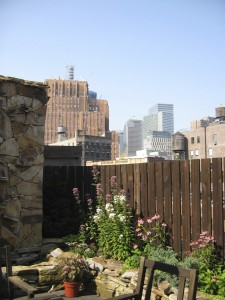 nyc-urbanscape-garden-13