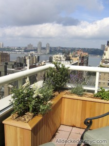 nyc-urbanscape-garden-16