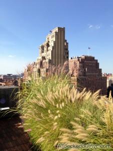 nyc-urbanscape-garden-2