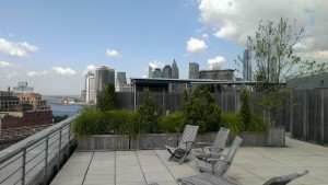 nyc-urbanscape-garden-35