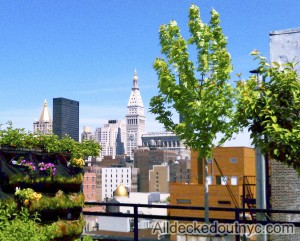 nyc-urbanscape-garden-38