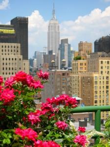 nyc-urbanscape-garden-8
