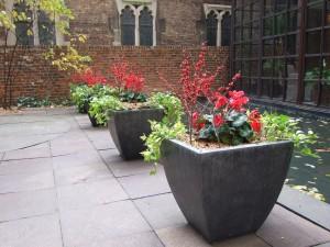 winter-planters