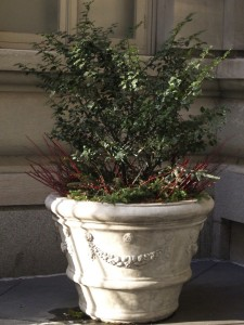 winter-pot-planter
